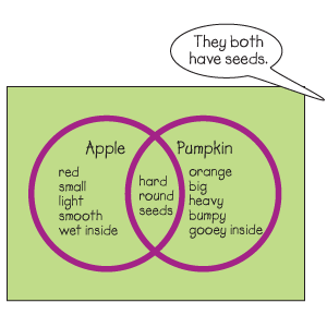 Circle Time Activity: making comparisons