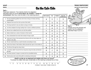 Printables Adaptations Worksheet results for animal adaptations 4 worksheet guest the mailbox science protective adaptations