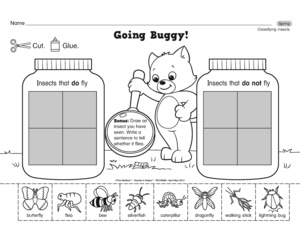 math worksheet : results for insects and bugs  guest  the mailbox : Insects Worksheets For Kindergarten