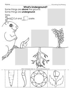 math worksheet : results for kindergarten worksheets  science  preschool  : Groundhog Day Worksheets Kindergarten