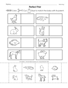 math worksheet : results for baby animals  guest  the mailbox : Animals And Their Babies Worksheets For Kindergarten