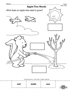 math worksheet : results for living things  kindergarten  worksheet  guest  the  : Living Things Worksheet For Kindergarten