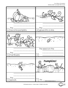 The Pumpkin Patch Parable - Thomas Nelson