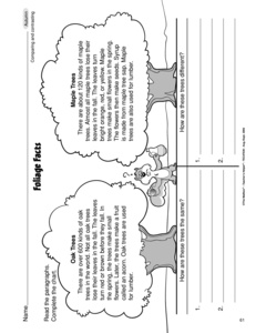 Printables Compare And Contrast Reading Worksheets results for compare and contrast worksheets guest the mailbox reading worksheet comparing contrasting