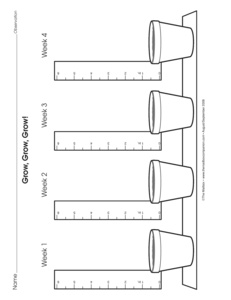 Results for kindergarten worksheets   2   Guest - The Mailbox