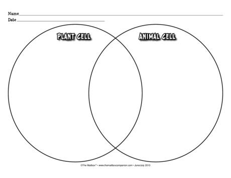 Venn diagram lesson plans the mailbox venn diagram science graphic organizer comparing plant cells and animal cells ccuart Images