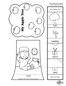 image relating to Apple Life Cycle Printable known as Look: apples (Prekindergarten, strategy, worksheet, heart