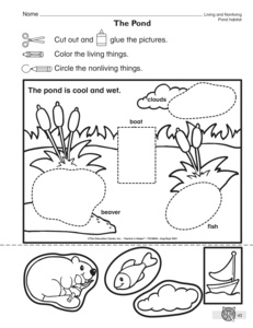 science worksheet classifying living and nonliving things